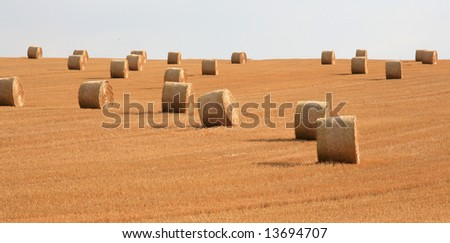 Stuble fiels with straw bales - stock photo