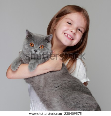 Studio image of a cheerful little girl played with a British breed of cat on a gray background - stock photo