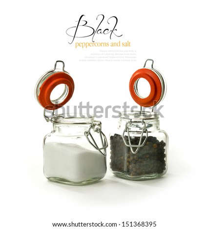 Studio image of black peppercorns and granulated salt in their respective 'shakers' against a  white background with soft shadows. Copy space. - stock photo