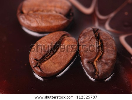 Studio image of macro shot of Arabica coffee beans on sweet cake/coffee beans