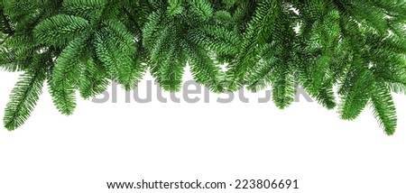 Studio isolated lush fir twigs as a bow-shaped border on pure white background - stock photo