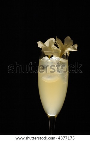 Studio lit cocktail in wine glass decorated with white flowers