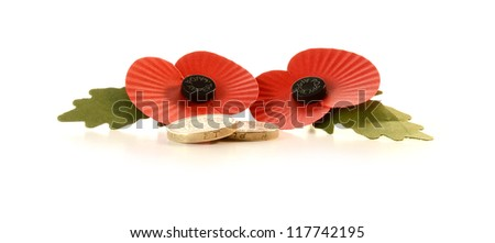 Studio macro of two iconic remembrance poppies with pound coins against a white background. Copy space. - stock photo