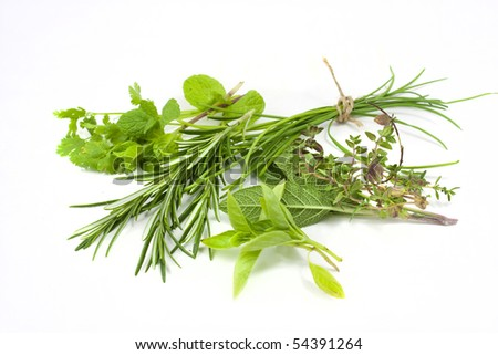studio macro shot of a selection of fresh mixed herbs