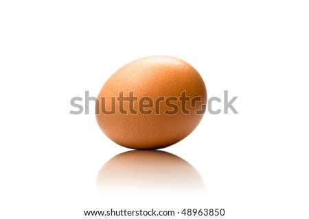 studio photography of a simple clean egg isolated on white, - stock photo