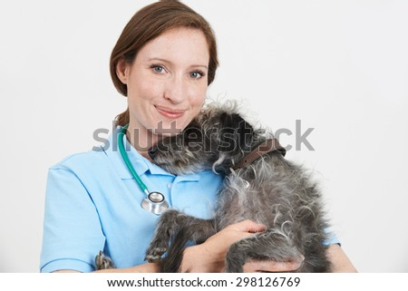 Studio Portrait Of Female Veterinary Surgeon Holding Lurcher Dog - stock photo