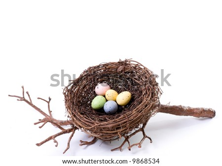 Studio Shot of a Bird's Nest on White Containing Five Pastel Bird Eggs - stock photo