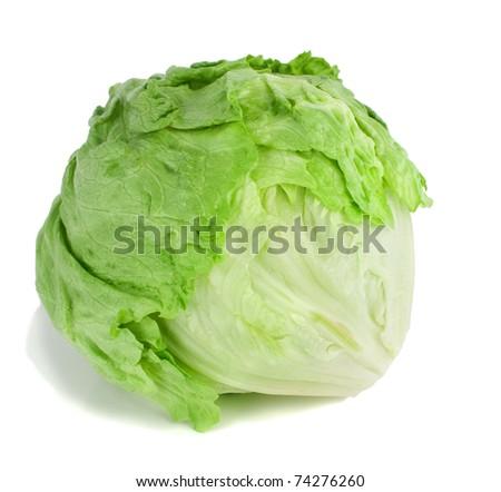 Studio shot of a whole iceberg lettuce on white background. - stock photo
