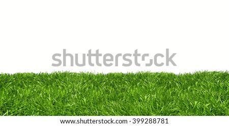 Studio shot of green lawn banner against white background - stock photo