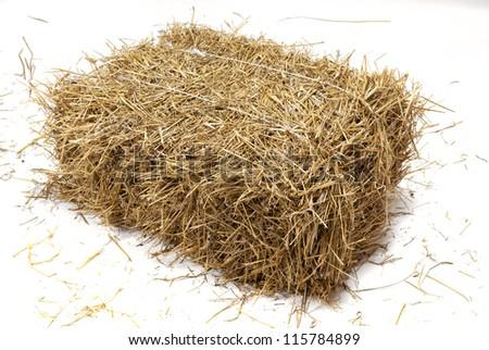 Studio shot of hay. - stock photo