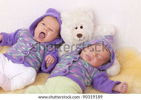 studio-shot of  identical ( similar ) twin baby girls resting and sleeping on a  sofa with her teddy bear. twins wearing handmade knitted  cardigans. - stock photo