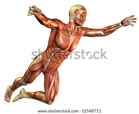 Study muscle man jumping - stock photo