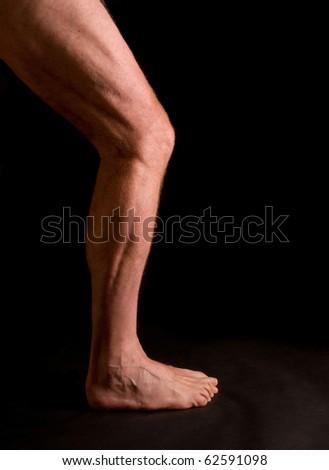 study, musculature of male athlete's leg - stock photo