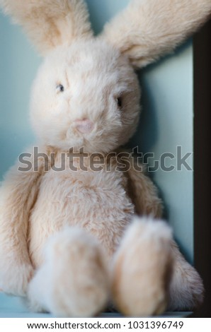 Stuffed bunny leaning against wall