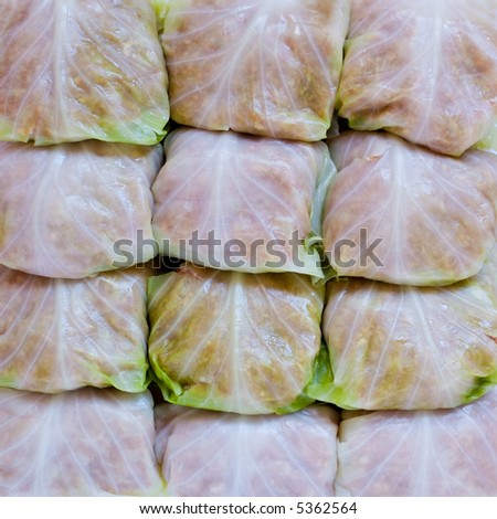 Stuffed cabbage - stock photo