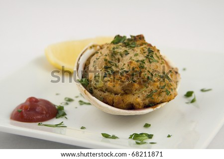stuffed clams appetizer - stock photo