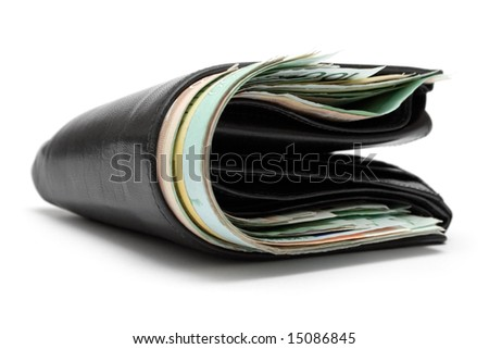 Stuffed Leather Wallet - stock photo