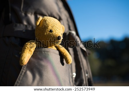 Stuffed toy bear that went into the pocket - stock photo