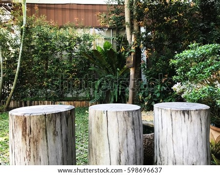 Stump Chairs At Outdoor Garden