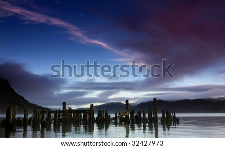 stumps in lochness - stock photo