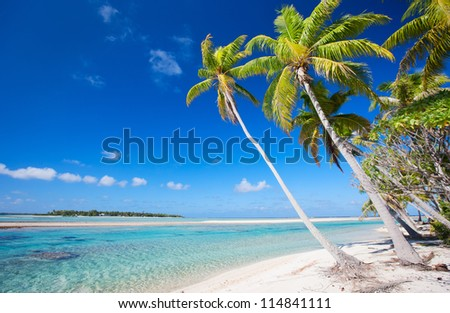 Stunning beach at Tikehau atoll in French Polynesia
