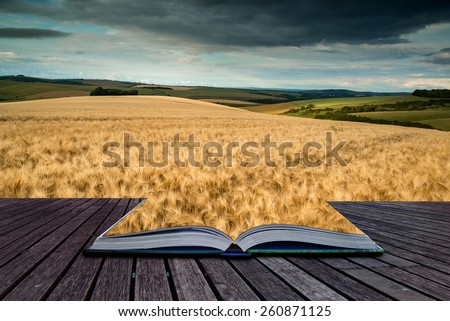 Stunning countryside landscape wheat field in Summer sunset conceptual book image - stock photo