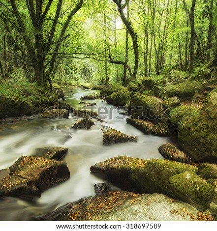 Stunning landscape of river flowing through lush forest Golitha Falls in England - stock photo