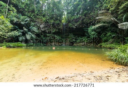 Stunning multicolored natural pool in the thick rainforest of Lambir Hills National Park, Borneo, Malaysia. - stock photo