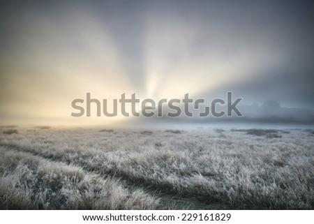 Stunning sun beams light up through thick fog of Autumn Fall frosty landscape - stock photo