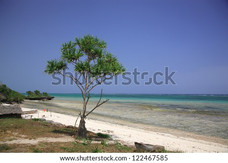 Stunning tropical beach with turquoise sea Mombasa Africa - stock photo