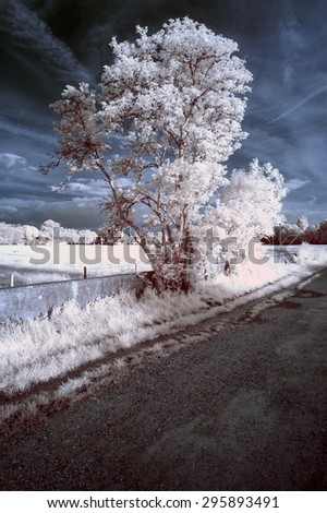 Stunning unique infra red landscape with false color impact - stock photo