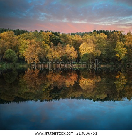 Stunning vibrant Autumn woodland reflected in still lake water landscape