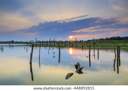 Stunning Vibrant sunset with stump of dead mangrove tree at the Kwong Lake, Kelantan, Malaysia. Image contain grain, noise and soft focus due long exposure