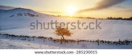 Stunning Winter panorama landscape snow covered countryside with beautiful sky and clouds - stock photo