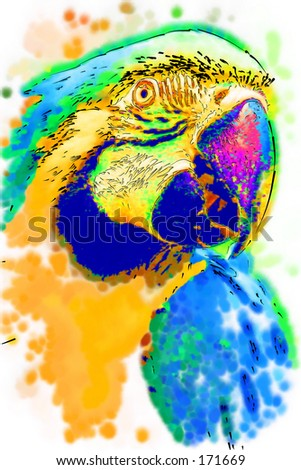 Stylised illustration of a Golden Macaw...