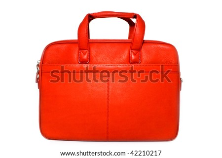 stylish bag - stock photo