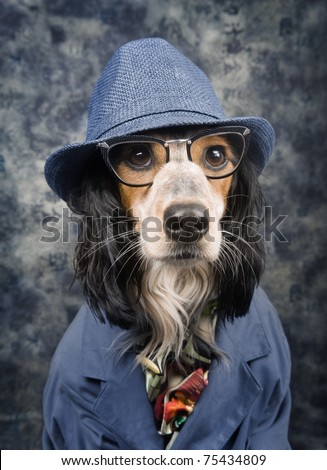 Stylish business dog - stock photo