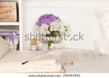 Stylish fountain pen lying on a blank page of a book - stock photo