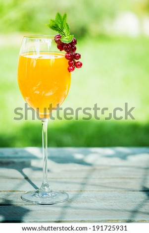 Stylish glass of orange and champagne cocktail to celebrate a special occasion garnished with delicious red currants standing on a sunny table in the garden on a summer day - stock photo