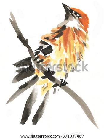 Stylish watercolor painting of white throat singing bird isolated on white background - stock photo