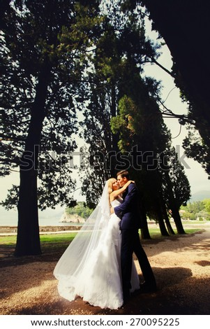 Stylish young charming bride and groom kissing laugh at cypress alley Montenegro - stock photo