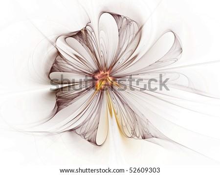 Stylized daisy on white background - stock photo