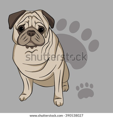 stylized dog a pug color dog on a gray background - Pug Pictures To Color