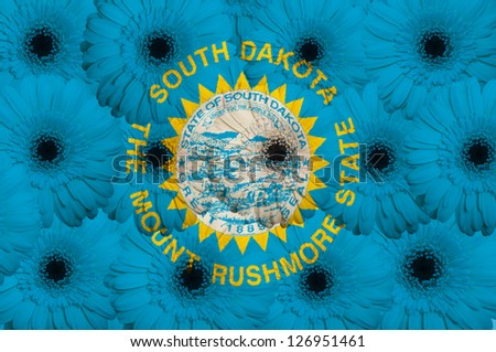 stylized national flag of south dakota with gerbera daisy flowers as concept and symbol of love, beauty, innocence, and positive emotions - stock photo