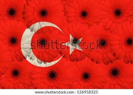 stylized national flag of turkey with gerbera daisy flowers as concept and symbol of love, beauty, innocence, and positive emotions - stock photo