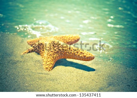 stylized photo of starfish in the sea waves - stock photo