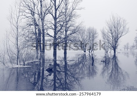 Submerged boat in the flooded field - stock photo