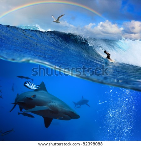 submerged image two parts the ocean and the surfer on the breaking wave cloudy sky over with the flying seagull and angry hungry shark underwater