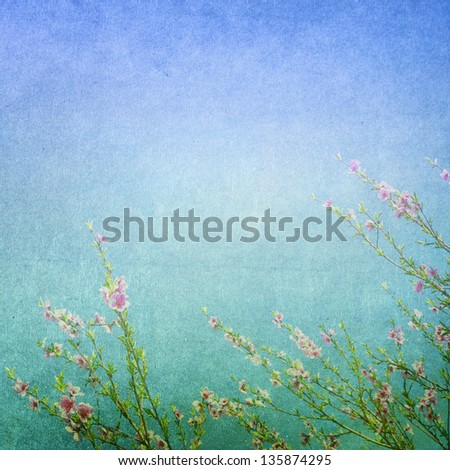 Subtle blue background with a frame of delicate spring blossom. Faded central area for copy space. - stock photo