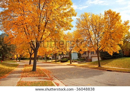 Suburban Neighborhood in Autumn - stock photo